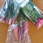カラフル野菜2